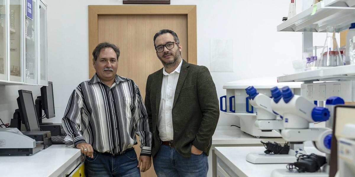 UTPL junto al INIVIT trabajan cooperativamente en el mejoramiento de la yuca