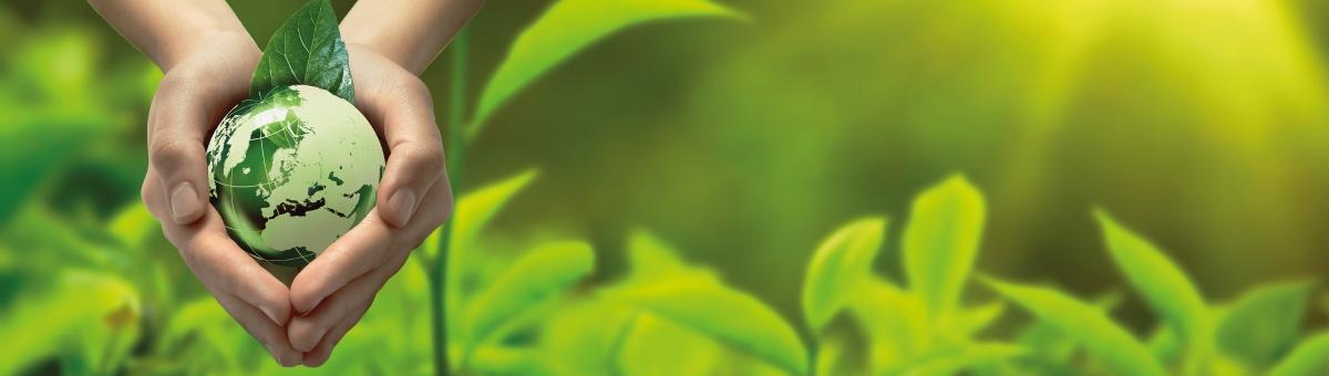 Bionegocios en Ecuador se impulsan desde UTPL