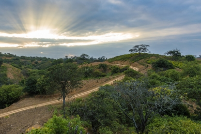 bosques-secos-en-ecuador