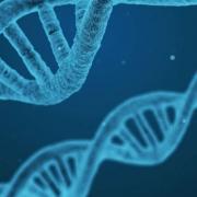 Bioética en la UTPL