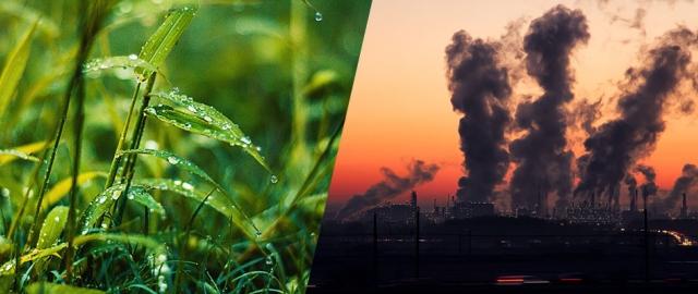 ¿Es posible solucionar conflictos socioambientales en el siglo XXI?